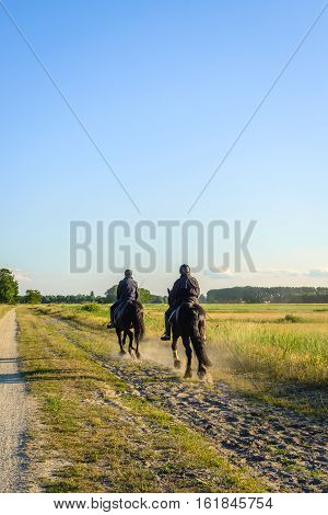 Two unknown black-clad horse riders riding on their dark horses in the low sunlight on the dusty bridle path in a rural area in the Netherlands. The low sun makes long shadows.
