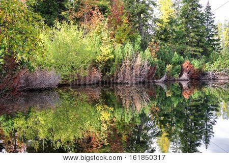 Reflection on the water at tarn Strbske pleso Slovakia