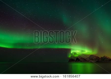 Aurora Borealis over mountains of Flaget Bay Lofoten