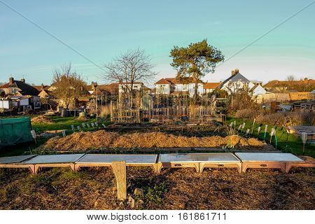 Allotments are small plots of land that you rent and cultivate yourself.