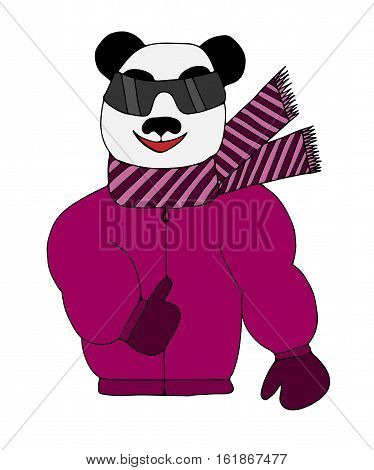 Colorful panda is sun glasses in a winter jacket and scarf. Art element for adult coloring book page design.