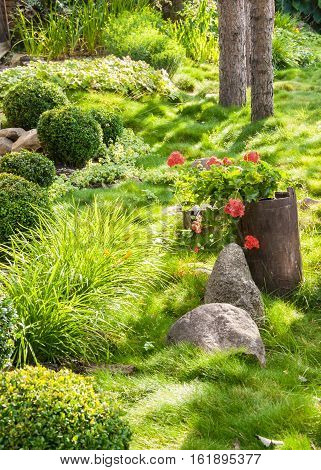 Landscaped beautiful flower garden with blooming seasonal flowers