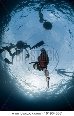 Free diver descending to the depth through air bubble ring