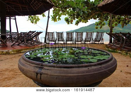 water lilies in a large pitcher, violet, green leaves float on the water, on the background of sea, mountain, wooden deck chairs, sunshade, thatched roof