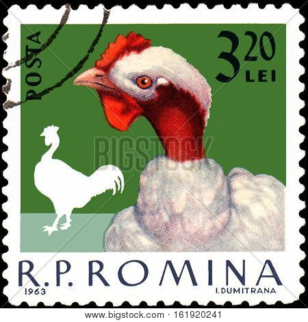 ROMANIA - CIRCA 1963: Postage stamp printed in Romania shows cock, a series of poultry