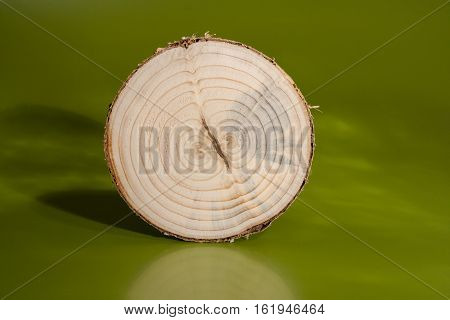 One pine saw cut on green background. Clearly visible two cores and annual rings.