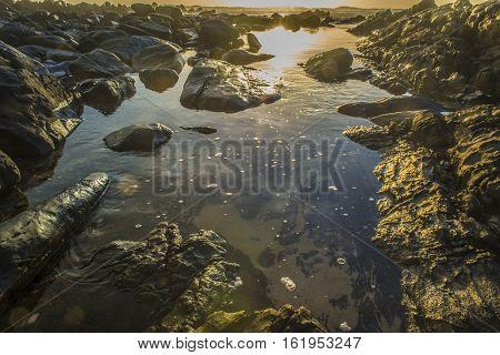 Tidal Pool At Sunset