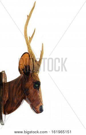 A deer head isolated on white background