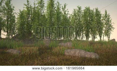 3d illustration of the bamboo grove landscape