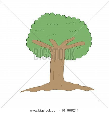 tree green vector drawn on white background