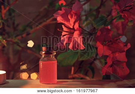 Romantic aromatherapy spa. Pink tropical blossom, bottle of essential oil, soft candid-light. Pink toned.