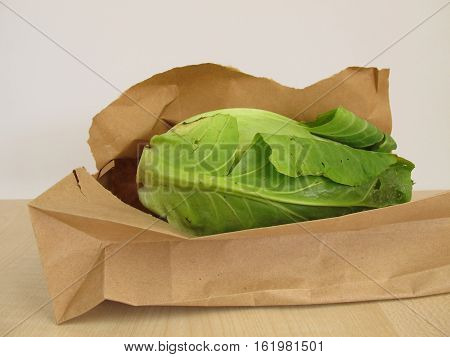 Head of cone cabbage in paper bag