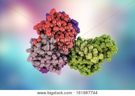 Molecular model of cholera toxin choleragen, 3D illustration. A toxin produced by bacterium Vibrio cholerae that pays crucial role in cholera disease
