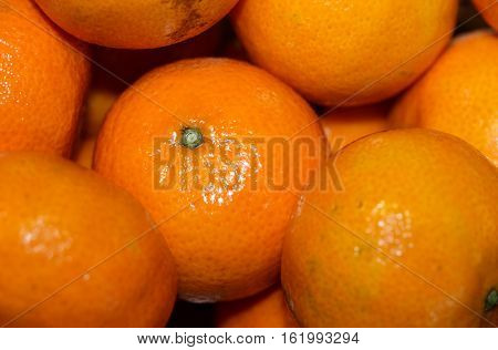 These are some mature clementines oranges insite a basket.