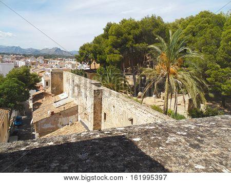 Castillo de Denia con palmeras y cielo