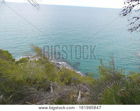 mar mediterráneo con vegetación y costa azul