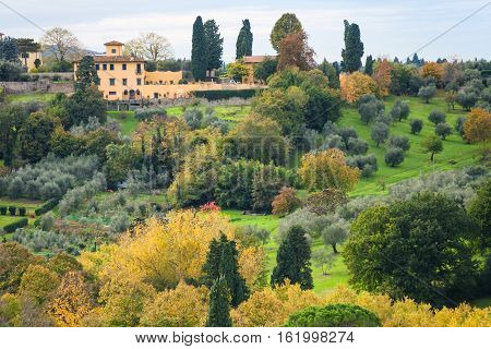 Green And Yellow Gardens In Outskirts Of Florence