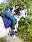 equestrian on horseback poster