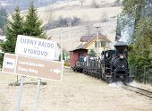 steam train, Ciernohronska Railway, Slovakia poster