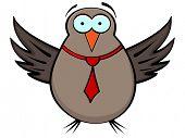 (raster image of vector) bird poster