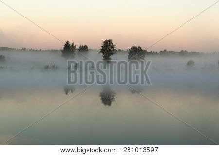 Trees Stand In The Morning Fog On The Riverbank. The Fog Hides The Outlines Of The Riverbank. It Cov