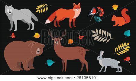 Forest Animals And Plants Set: Bear, Wolf, Fox, Deer, Wolf, Hare, Squirrel, Bullfinch On Rowan Branc
