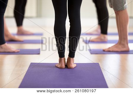 Group Of People Practicing Yoga, Doing Leg Strengthening Exercis