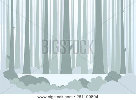 Silhouette Of Tree Trunks, Bushes And Glowing Light On Background. Winter Or Autumn Forest Backgroun