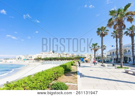 Otranto, Apulia, Italy - Palm Trees At The Promenade Of Otranto In Italy