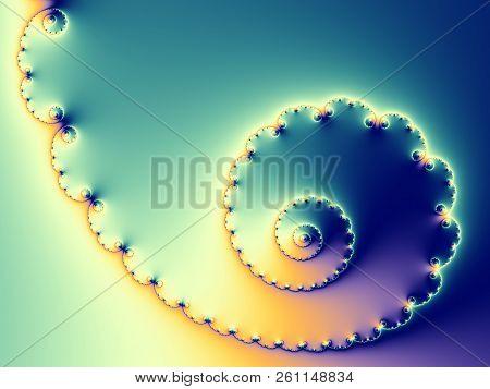 Abstract Digital Artwork. Patterns Of Nature. Shells.