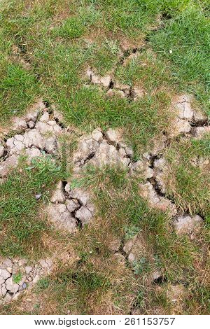 Cracked Parched Ground With Patches Of Grass