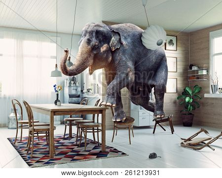 Frightened elephant runs from mouse to table. Photo and media mixed creative combination