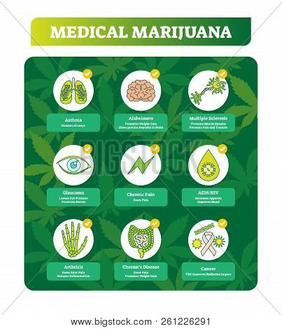 Medical Marihuana Vector Illustration. Benefits Symbols Collection Set. Examples Of Cancer, Chornn D