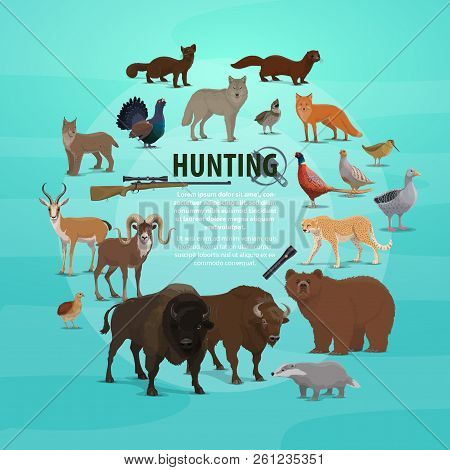 Hunting Animal Poster With Rifle And Lighter. Vector Of Hunter Prey, Bear And Buffalo, Badger And Go