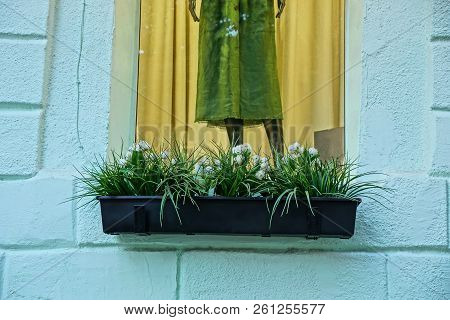 Black Vase With Ornamental Plants And White Flowers On The Window Sill Of The Window With A Dummy On