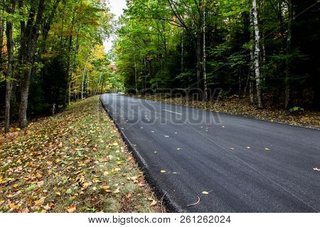 Empty autumn road with out cars
