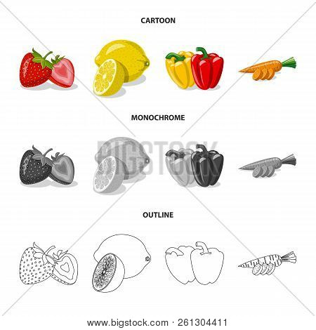 Isolated Object Of Vegetable And Fruit Symbol. Set Of Vegetable And Vegetarian Stock Vector Illustra