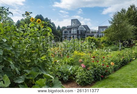 A Building In The Mist Of A Beautifully Kept Vegetable And Flower Garden