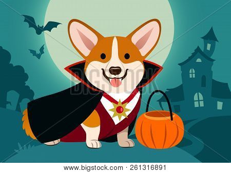 Halloween Corgi Dog In Vampire Costume Against Spooky Background: Night Scene With Full Moon, Haunte