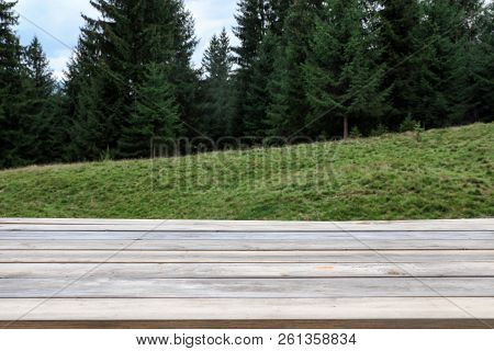 Empty Wooden Table And Beautiful Conifer Forest On Background