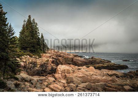 Foggy Maine Coastline - Acadia National Park, Maine, Usa