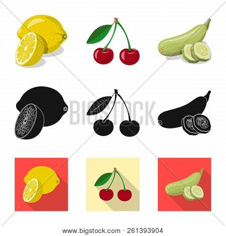 Vector Illustration Of Vegetable And Fruit Logo. Set Of Vegetable And Vegetarian Vector Icon For Sto