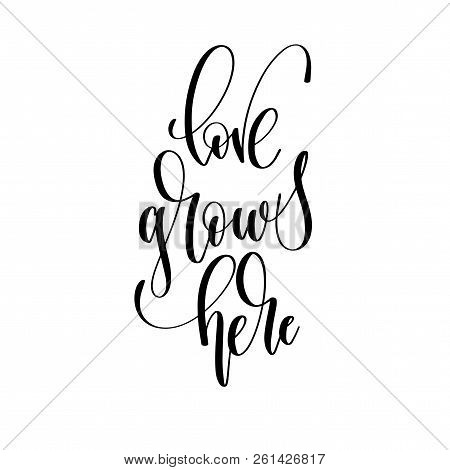Love Grows Here - Hand Lettering Overlay Typography Element