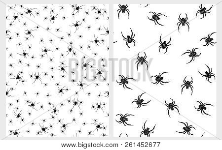 Scary Black Spiders Vector Patterns. Horrific Halloween Decoration. White Background. Fat Hairy Spid