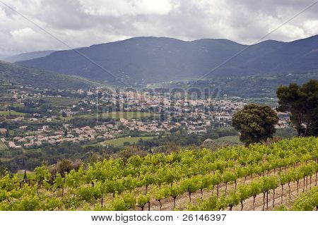The city of Nyons, wedged in the vally between the famous Cote du Rhone vineyards