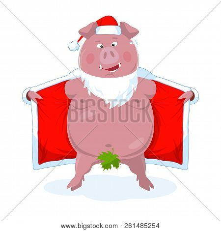 A Funny Naked Boar In Santa's Costume. New Year`s Vector Illustration.