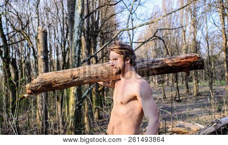 Man Brutal Sexy Lumberjack Carry Big Log On Shoulder. Strength And Power. Man Brutal Strong Attracti