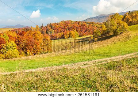 Lovely Autumn Scenery Of Carpathian Mountains. Forest In Fall Colors Behind The Grassy Meadow. Might