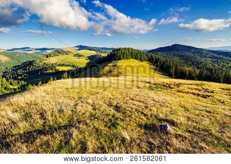 Mountainous Early Autumn Landscape In Evening Light. Beautiful View From The Grassy Meadow On Hill.