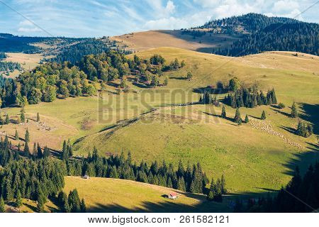 Mountainous Early Autumn Landscape In Evening Light. Location Romania, Apuseni Natural Park